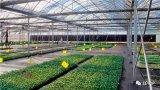农业物联网产业如何走?看三大关键技术和四大核心应用