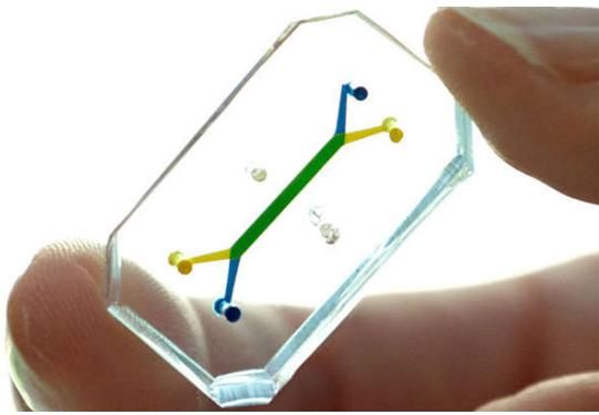 芯片器官技术逐步趋近智能化,不需侵入性就能反映细...