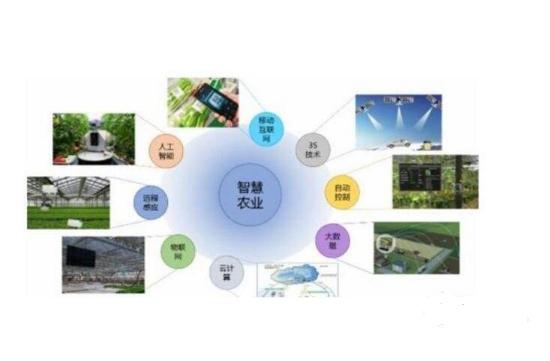 百花齐放的农业物联网解决方案