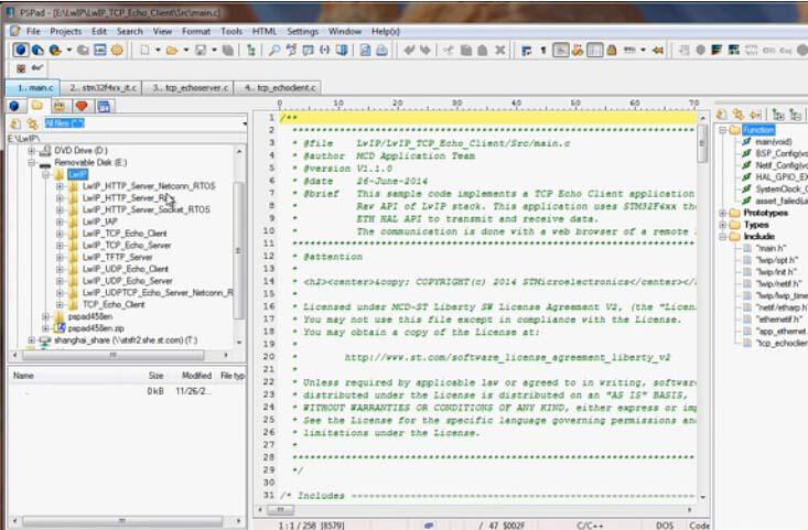 TCP回响客户端:RAW API接口