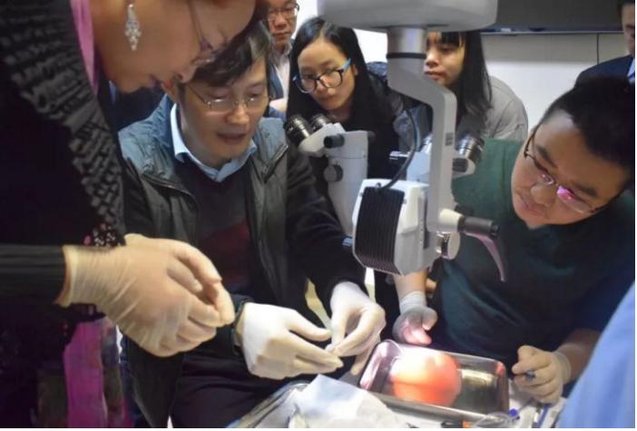 折叠式人工玻璃体球囊审查通过,助力严重视网膜脱离...