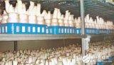 温湿度传感器为菌菇房提供了良好的环境