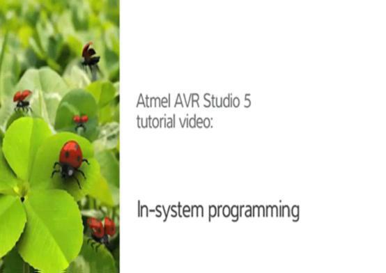 AVR Studio5的ISP使用技巧