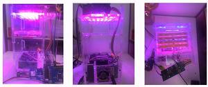 利用Atmel的部件设计花卉生长培育器
