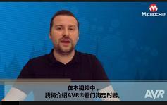 AVR® Insights(7)— 关于看门狗定时器的介绍