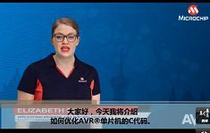 AVR® Insights(10)— 怎么样去优化C代码?