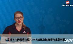 AVR® Insights(5) — 关于熔丝的...