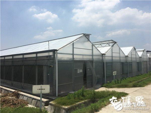借助物联网技术,无锡欧姆龙智能农业园生产效率和品质大大提升