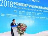 中国电动汽车百人会理事长陈清泰:动力电池发展困境...