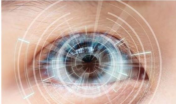 虹膜识别技术在门禁系统中的应用