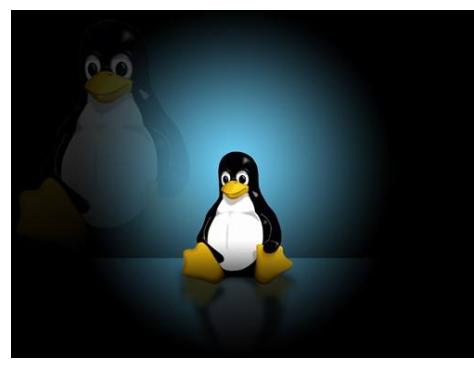 97条Linux常用命令总结你了解多少啊看懂了你...