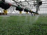 """论""""土肥水项目""""是怎么成为产业扶贫重要一环的"""