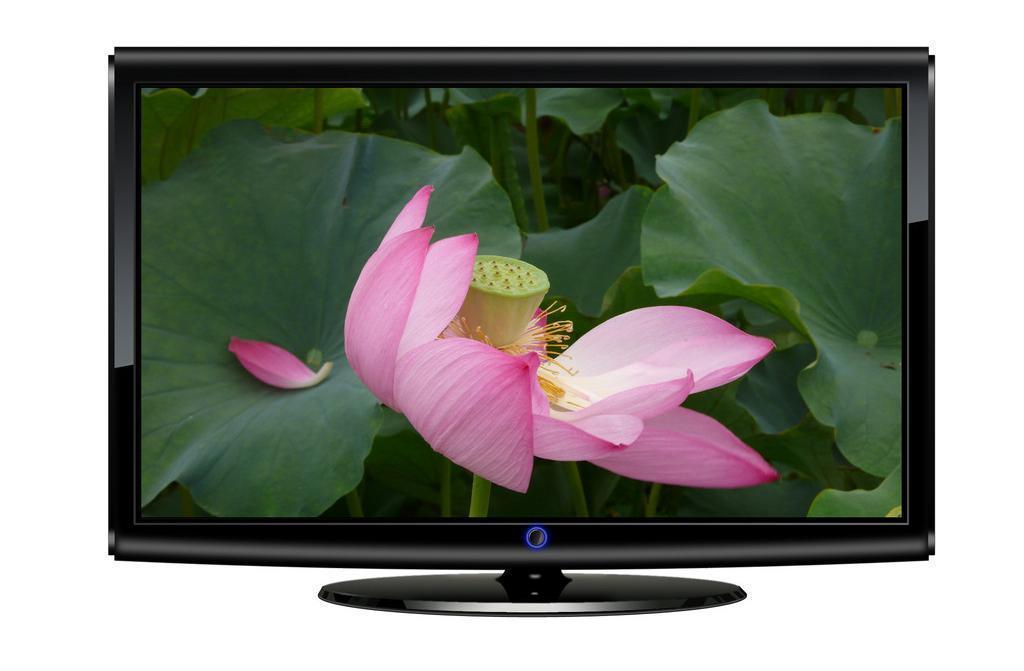 韩国和中国电视制造商第3季面板采购量都呈增长趋势