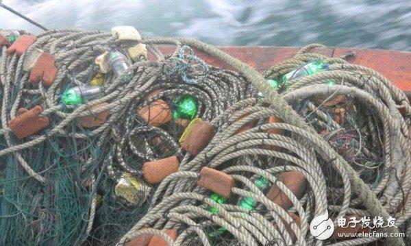 研究人员称,使用设置了LED灯具的渔网时可降低海鸟和海龟的无意捕获率