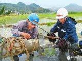 强台风冲击超200万用户停电,全力开展电网抢修恢...