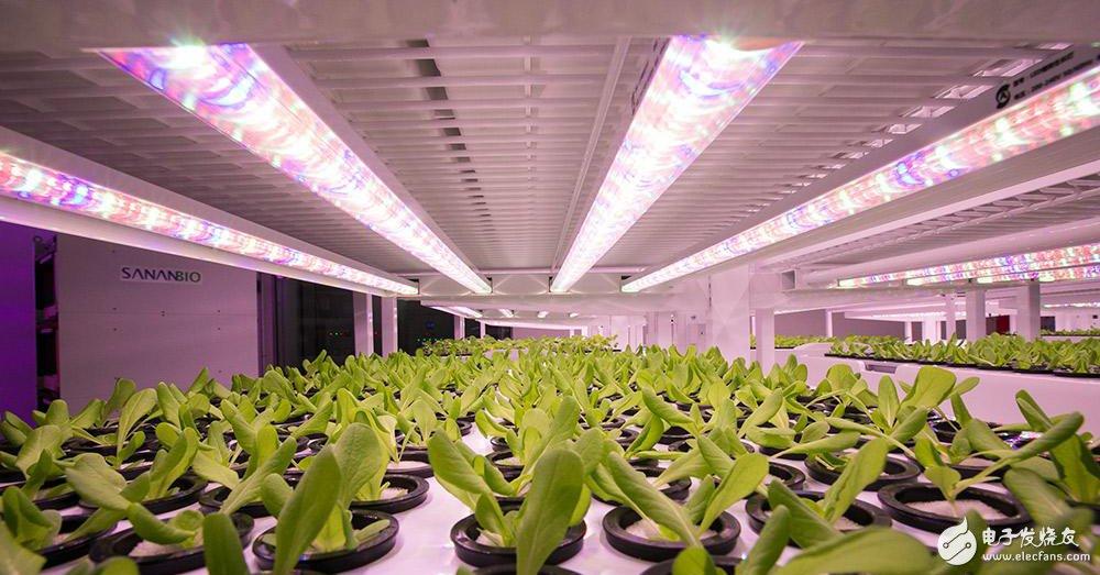 中科生物将对5000平方米的室内高科技农场进行翻新