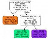 构建一个决策树并查看它如何进行预测