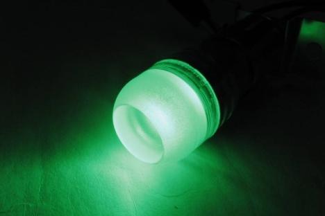 绿光LED灯泡可降低误抓其他保育物种的机率