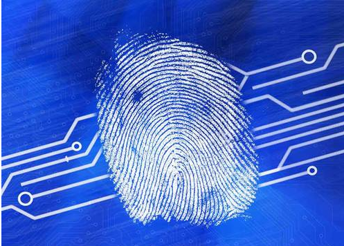 全屏指纹识别,可检测温度的新型指纹传感器