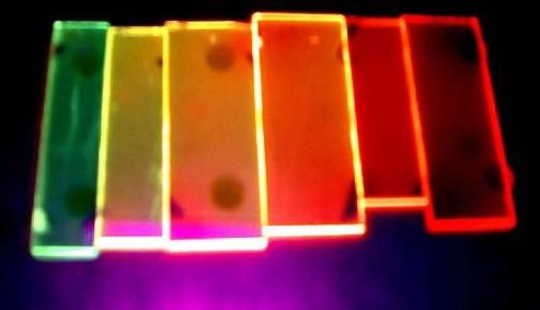 中国对相关OLED产品需求旺盛,预计下半年销售增长近20%