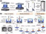 单细胞蛋白质组学分析研究新突破!将微流控液滴与蛋白质组分析技术相结合