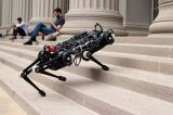 新型Cheetah机器狗不用眼睛也可以快速跳跃