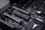 台电幻影实惠型PCIe NVMe SSD新产品NP800好评如潮