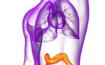 人工智能在医疗领域的应用 日本通过ai尿液分析高精度诊断大肠癌