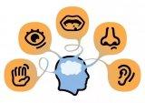 传感器在智能时代的应用及光电传感器的功能介绍
