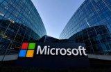 微软和国家地理达成合作:目的是关于AI的环境研究