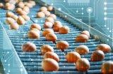 什么是区块链?区块链在食品行业有哪些应用?