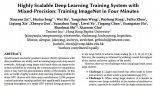一种具有混合精度的高度可扩展的深度学习训练系统