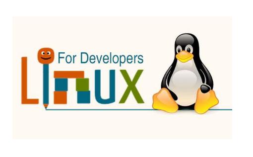嵌入式Linux OS启动流程