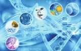 生物科技发展与人类命运共同体塑造,加强新兴生物技...