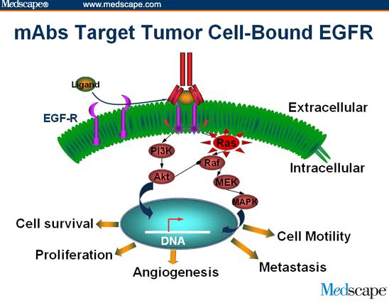 揭示癌基因維持肺癌的發生機制研究成果,肺癌或將可...
