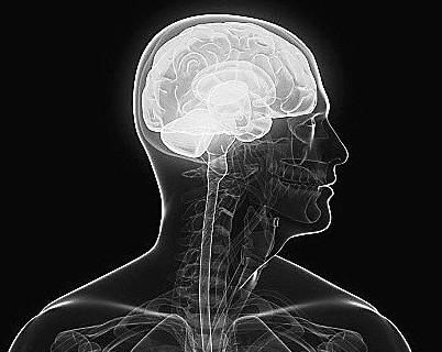 卷积神经网络:可预测混合用药产生的副作用