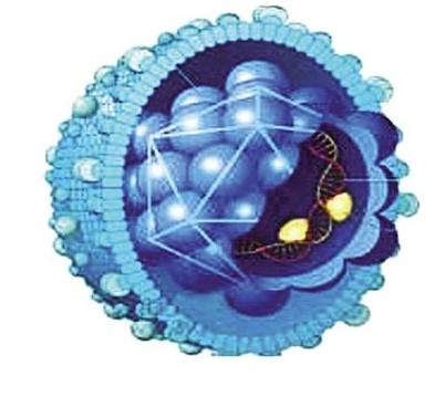 可以破壞乙肝病毒基因組的藥物研制成功,為乙肝患者...
