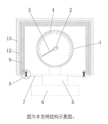 【新专利介绍】一种防强腐隔膜压力表