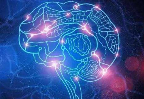 SpiNNaker为模拟大规模神经网络提供高性能平台