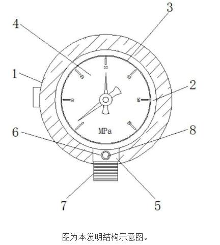 【新专利介绍】一种矿用双针压力表