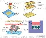 探讨微流控技术在生物传感检测领域的广泛应用