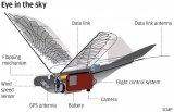 """中国最新研发的""""鸽子""""无人机在试飞!精确复制真正鸟类90%的飞行动作!"""