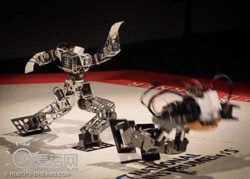 机器人越来越专业了,当明星有看头,当英雄有实力