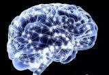 一种简单的,循序的方式讲解神经网络