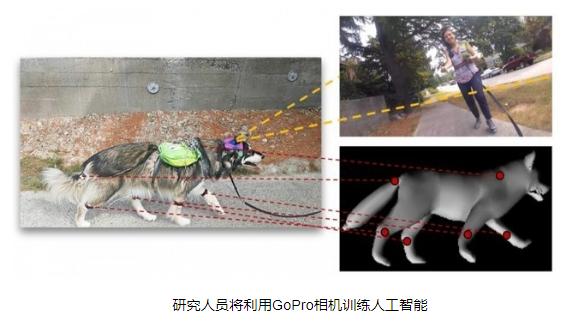 研究人员利用GoPro摄像机训练人工智能神经网络...