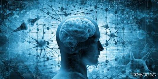 """普林斯顿大学与英特尔合作,绘制大脑""""地图"""""""