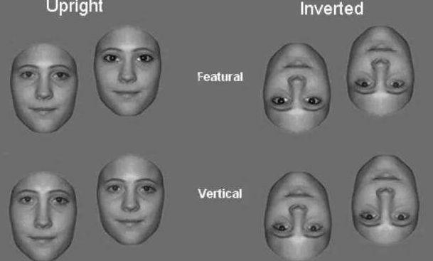 人脸情绪剪影素材