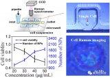 如何将微流控SERS技术应用于活细胞检测?
