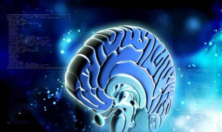 多模态AI医疗大脑究竟有多聪明?