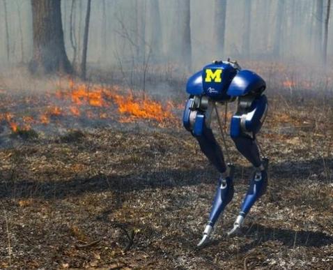 美国推出一款双足机器人:不仅可以直立行走,还可以穿越火场救援